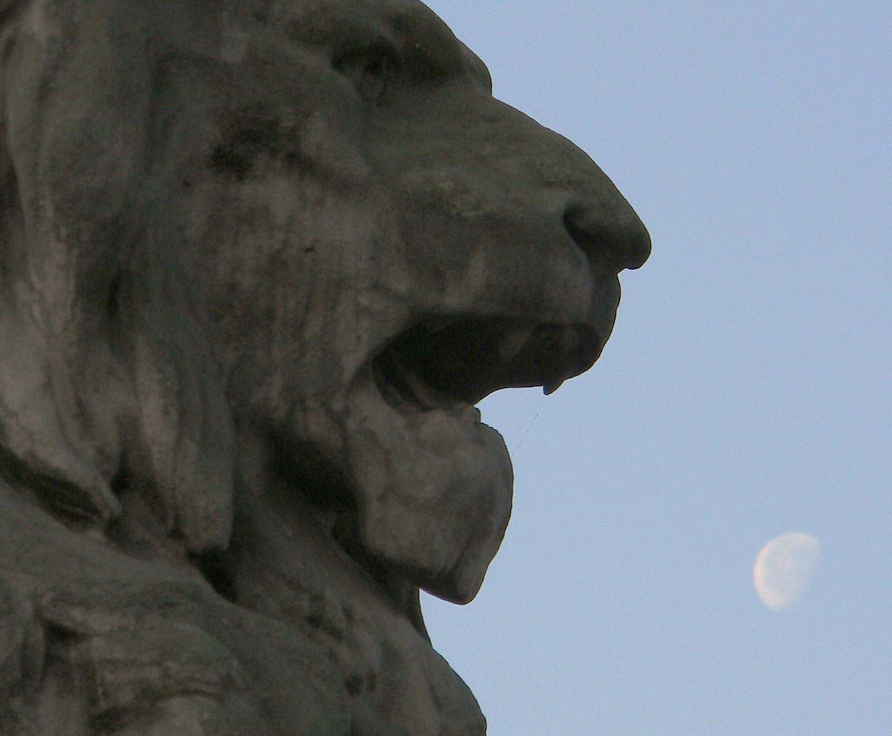The Lion who ate the Moon